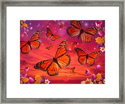 Red Monarch Sunrise Framed Print by Alixandra Mullins