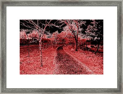 Red Night Trail Framed Print by Mickey Harkins
