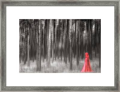 R.e.d Framed Print