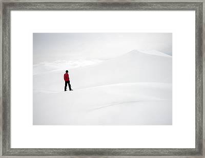 Red On White Framed Print by Leland D Howard