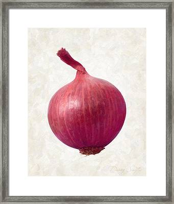 Red Onion  Framed Print by Danny Smythe