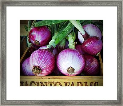Red Onions Framed Print by Charlette Miller