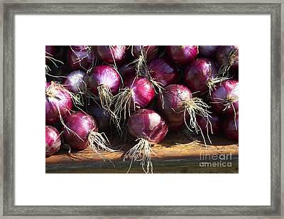 Red Onions Framed Print by Tony Cordoza