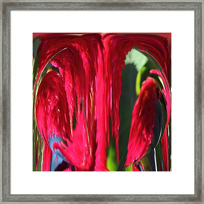 Red Orb Framed Print by Rhonda Humphreys