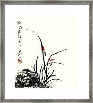 Red Orchids Framed Print by Tenku