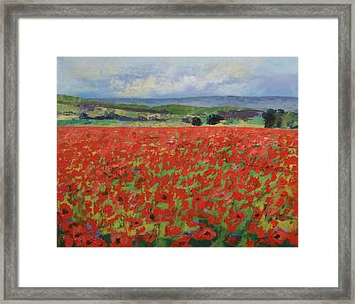 Red Oriental Poppies Framed Print by Michael Creese