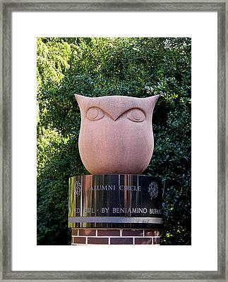 Red Owl At Temple Framed Print