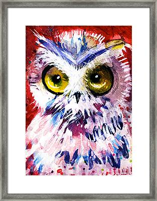 Red Owl Framed Print