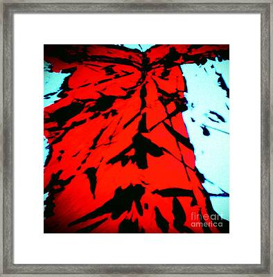 Red Owl Watching Over Me Framed Print
