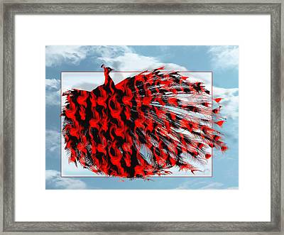 Red Peacock Framed Print