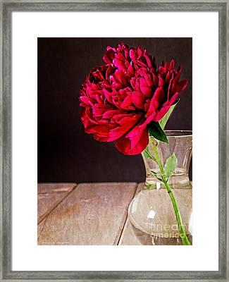 Red Peony Flower Vase Framed Print by Edward Fielding