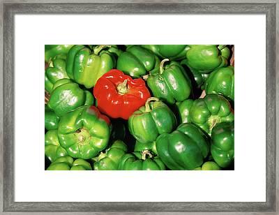Red Pepper Among Green Peppers Framed Print