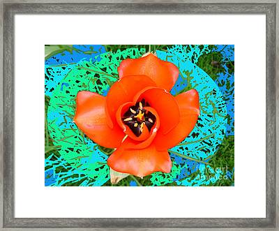 Red Perfect Tulip By M.l.d. Moerings  2008 Framed Print