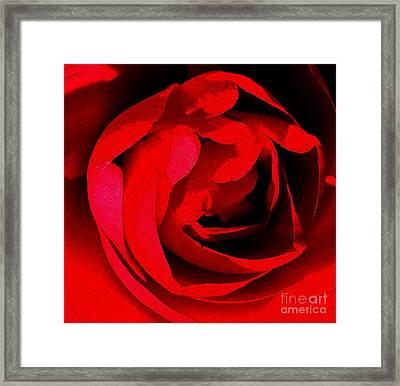 Red Petals Framed Print by Scott Allison
