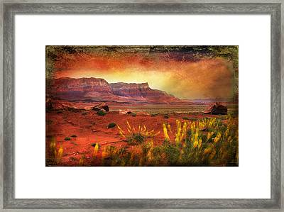 Red Planet Framed Print by Barbara Manis