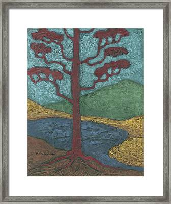Red Ponderosa Framed Print