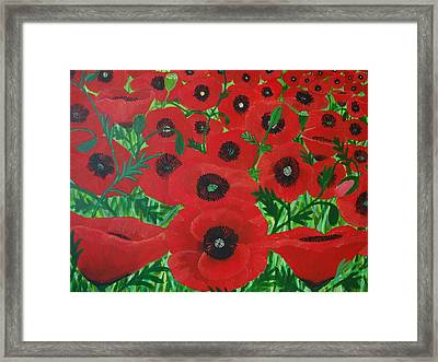 Red Poppies 1 Framed Print