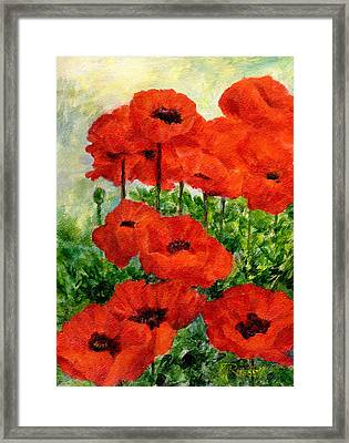 Red  Poppies In Shade Colorful Flowers Garden Art Framed Print