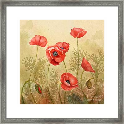 Red Poppies Three Framed Print