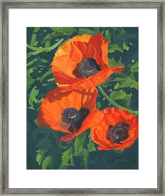 Framed Print featuring the painting Red Poppies Three by Lynne Reichhart