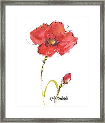 Red Poppy And Bud Framed Print