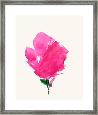 Red Poppy Framed Print by Frank Bright