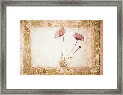 Red Poppy Framed Print by Jochen Schoenfeld