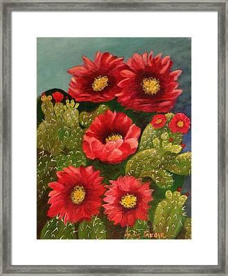 Red Prickley Pear Cactus Flower Framed Print by Janis  Tafoya