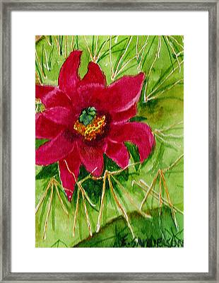 Red Prickly Pear Framed Print