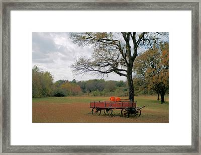 Red Pumpkin Wagon Framed Print by Paulette Maffucci