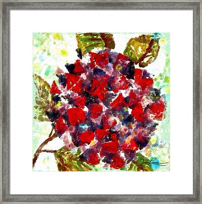 Red Purple Flower Framed Print by Joan Reese