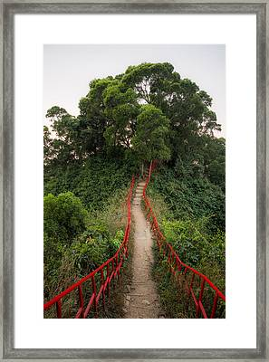 Framed Print featuring the photograph Red Rails by Alexander Kunz
