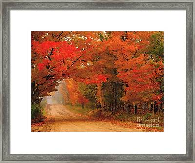 Red Red Autumn Framed Print by Terri Gostola