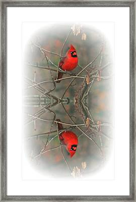 Red Reflection Framed Print