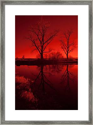 Red Reflections Framed Print by Miguel Winterpacht