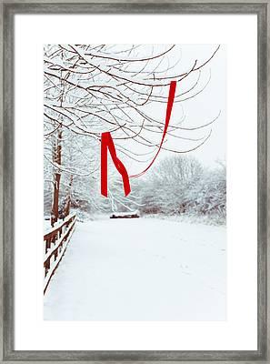 Red Ribbon In Tree Framed Print by Amanda Elwell