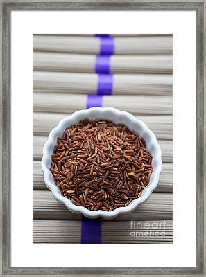 Red Rice Framed Print by Edward Fielding