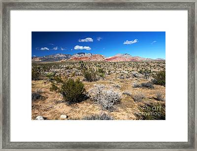 Red Rock Canyon Landscape Framed Print by John Rizzuto