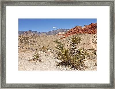 Red Rock Canyon Nevada. Framed Print by Gino Rigucci
