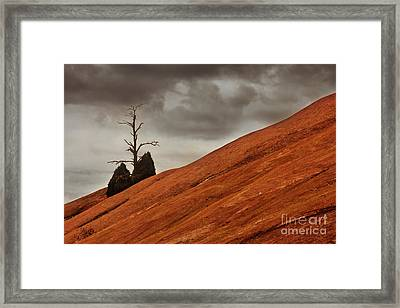 Framed Print featuring the photograph Red Rock by Dana DiPasquale