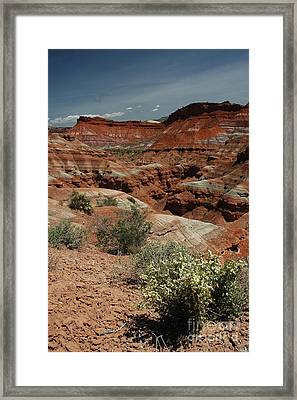 801a Red Rock Formations Framed Print by NightVisions