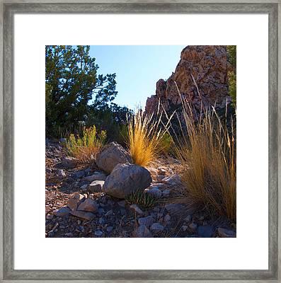 Red Rock Morning Light Framed Print