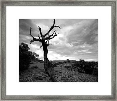 Red Rocks Dead Tree Framed Print