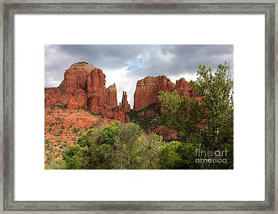 Red Rocks Of Sedona With Spring Trees Framed Print