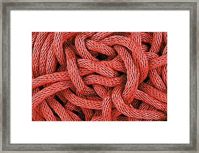 Red Rope Framed Print