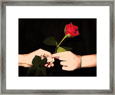 Red Rose By Jan Marvin Studios Framed Print