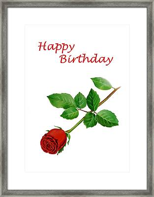 Red Rose Happy Birthday  Framed Print by Irina Sztukowski