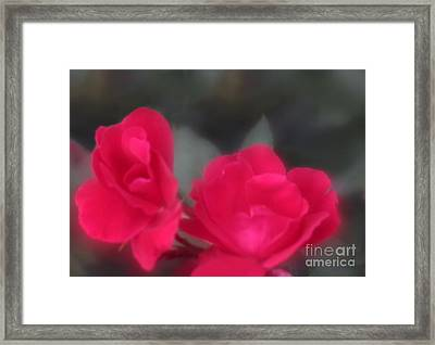 Framed Print featuring the photograph Red Rose Harmony by Mary Lou Chmura