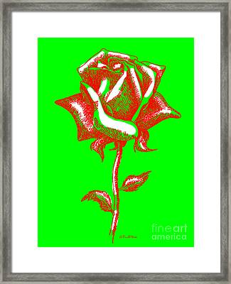 Red Rose Paintings 2 Framed Print by Gordon Punt
