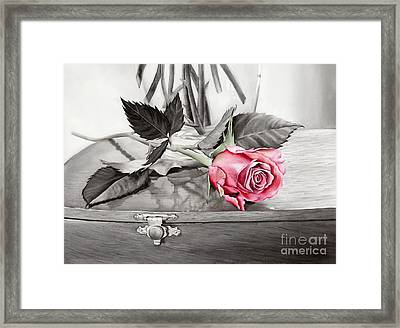 Red Rosebud On The Jewelry Box Framed Print by Hailey E Herrera
